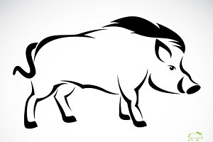 Vector image of an boar