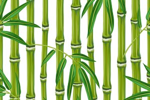 Seamless patterns with bamboo.