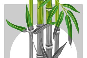 Poster with bamboo plants.