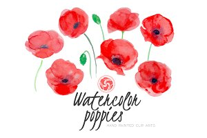 Red Poppies - Watercolor Flowers