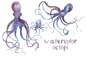 Watercolor Octopi