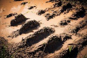 Wheel track on dirt