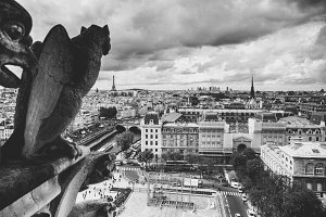 Gargoyle, View from Notre Dame, Pari