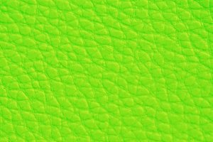 Light Green Leather