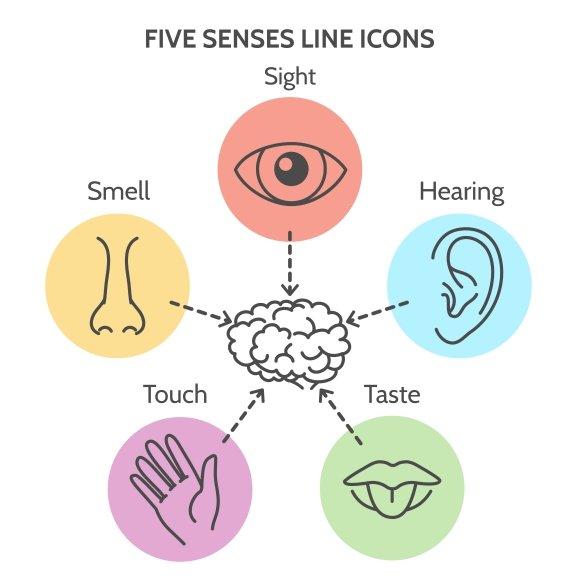 Five Senses Line Icons