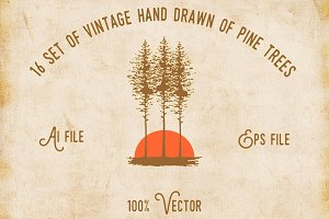 Vintage Handrawn of Pine Tree