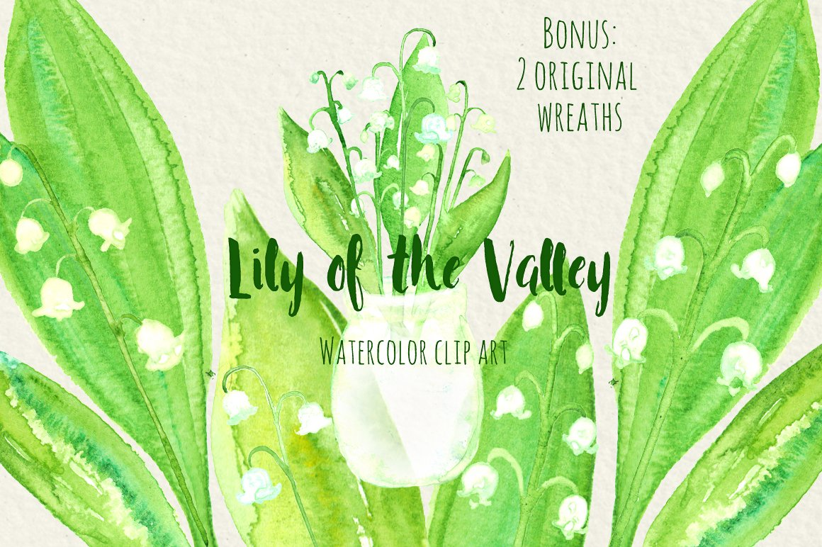 Lily of the valley watercolors illustrations creative market izmirmasajfo