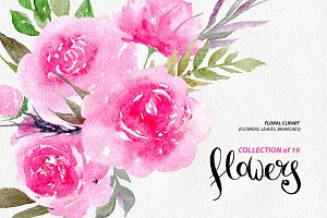 Watercolor pink peonies, 19 png