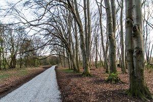 Path of recreation