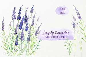 Watercolor Clip Art Simply Lavender
