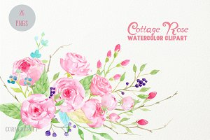 Watercolor Clip Art Cottage Rose