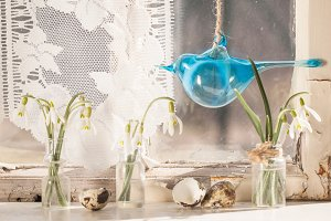 Easter interior with snowdrops and q