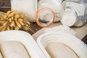 Bread dough in the fermentation basket