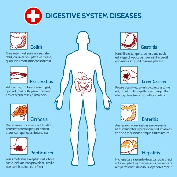 Human Digestive System Diseases ~ Graphics ~ Creative Market