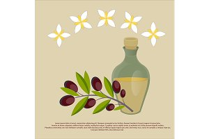 Organic olive oil Best quality