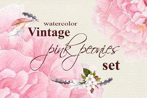 Vintage pink peonies set. Watercolor