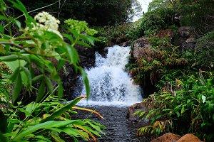Waipo'o Falls Swimming Hole