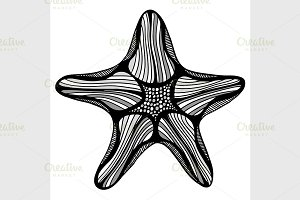 Black contour starfish illustration.