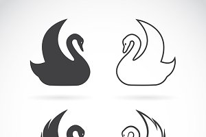 Vector images of swan design