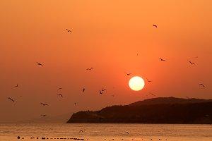 Orange sunset on sea