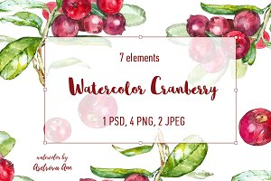 Watercolor Cranberry