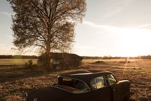 Rustic Vehicle and tree in a field