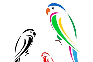 Vector image of an parrot