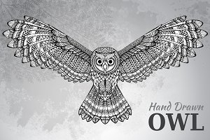 Hand drawn flying owl
