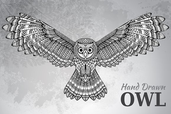 hand drawn flying owl graphics