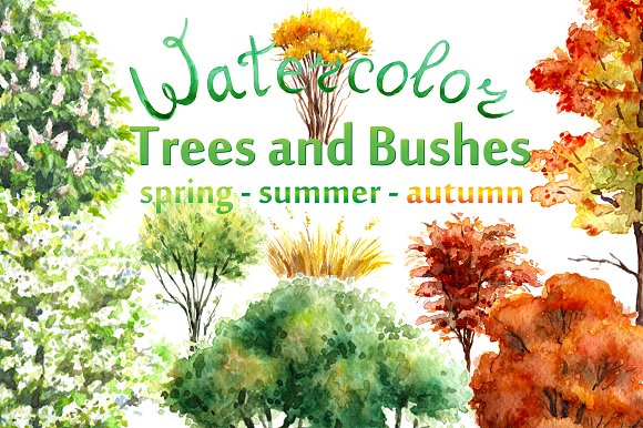 Watercolor  Trees and Bushes