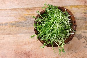 Bowl of pea sprouts