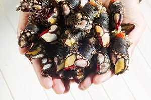 Galician fresh goose barnacles