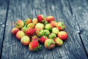 Bunch of red wild strawberry