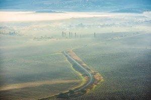 Misty road through fields