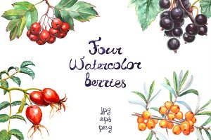 Realistic watercolor berries set