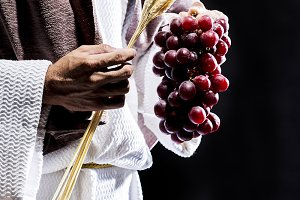 Jesus Christ with grapes