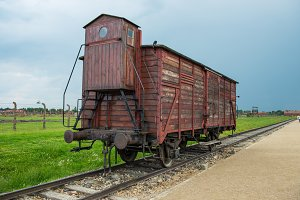 Holocaust Death Camp cattle train