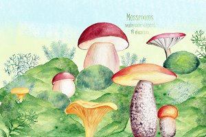 Watercolor moss and mushrooms