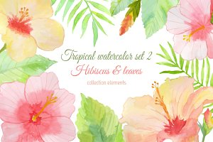 Tropical watercolor set 2. Hibiscus.