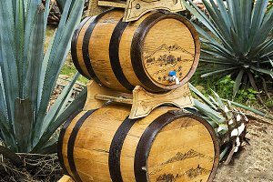 Tequila barrels stacked