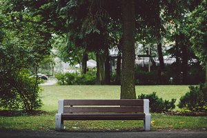 Bench in a park #1