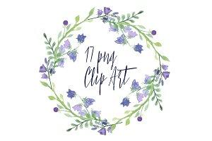 17 Watercolor Campanula Clip Art