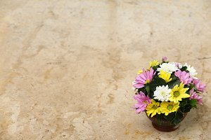Flower on marble table
