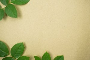 green leaves on craft paper