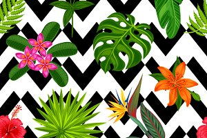 Patterns with tropical plants.