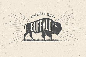 Buffalo. Vintage Vector Label