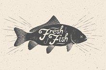 Fresh Fish. Vector Illustration