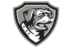 Rottweiler Guard Dog Shield