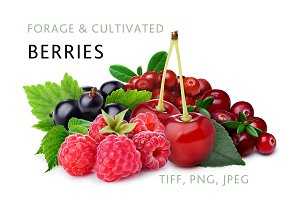 Berries, 5 images