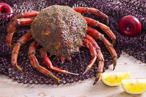 seafood, crab